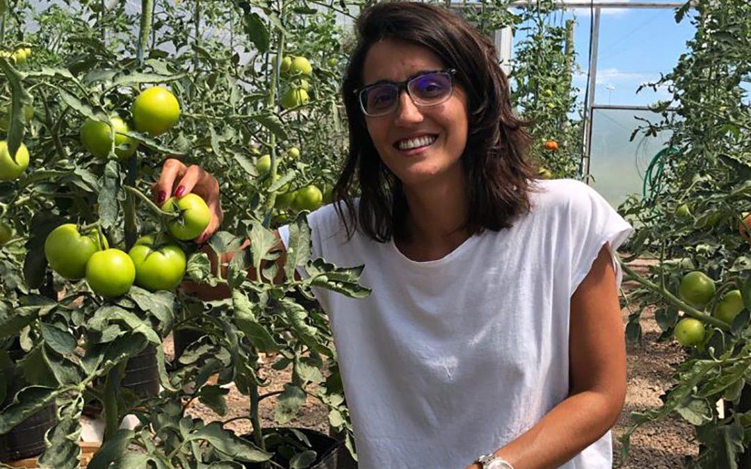 Trabajan para mejorar cultivos de manera natural