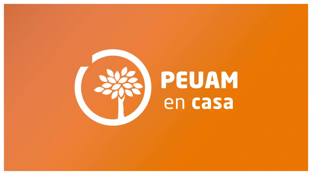 """""""El PEUAM en casa"""" con más de 700 inscripciones"""